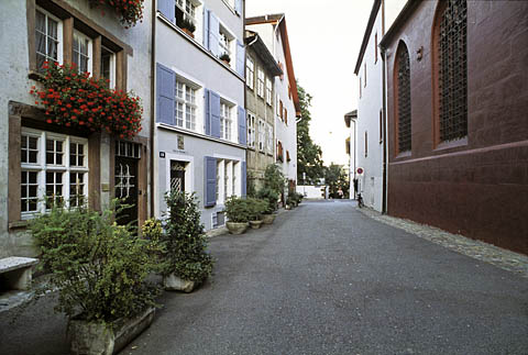 Street plantings in Basel, Switzerland